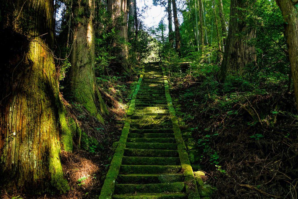 Die Paruresis zu überwinden ist ein langer Weg: Treppen auf dem Weg zum Gipfel